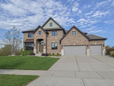 Homer Glen Single Family Home For Sale: 13738 Stonebridge Woods Crossing