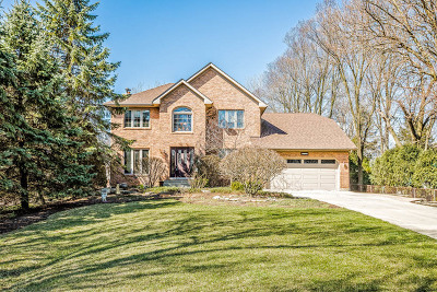 Downers Grove Single Family Home For Sale: 5420 Grand Avenue