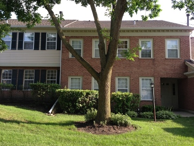 Schaumburg Condo/Townhouse For Sale: 1301 Springwood Drive #B2