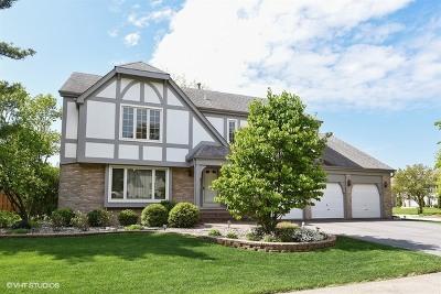 Addison Single Family Home For Sale: 713 East Sherwood Drive