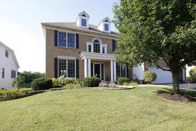 Plainfield Single Family Home Contingent: 22612 Fox Trail Lane