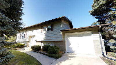 Downers Grove Single Family Home Contingent: 6754 Briargate Drive