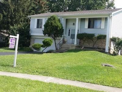 Bolingbrook Single Family Home Contingent: 224 Aspen Drive