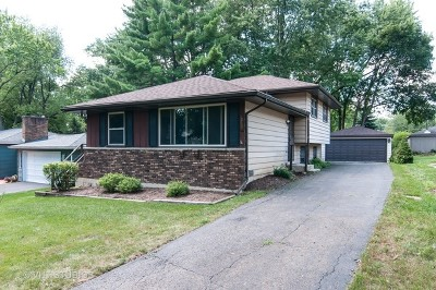 Wheaton Single Family Home Contingent: N062 Nepil Avenue