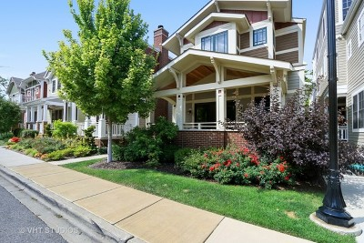 Libertyville Single Family Home For Sale: 138 School Street