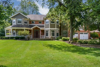Willowbrook Single Family Home For Sale: 17w135 87th Street
