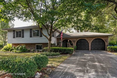 Downers Grove Single Family Home For Sale: 1331 Oak Hill Road