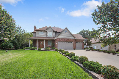 Lockport Single Family Home For Sale: 13355 Forest Lane
