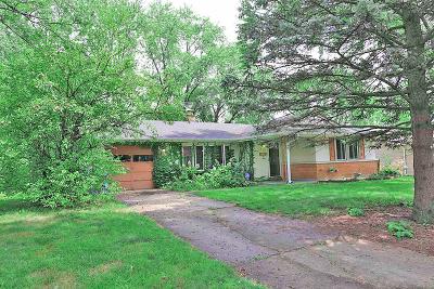Schaumburg Single Family Home For Sale: 523 Brockton Lane