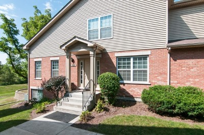 Winfield Condo/Townhouse For Sale: 0s085 Kerry Court