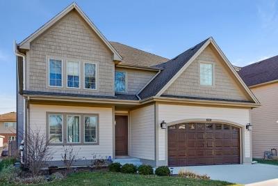 La Grange Single Family Home For Sale: 1029 6th Avenue