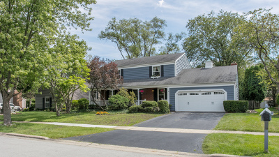Willowbrook Single Family Home For Sale: 313 Chatelaine Court