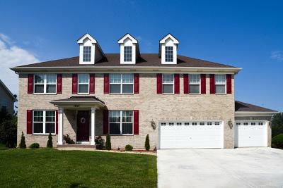 Plainfield Single Family Home For Sale: 13015 Grande Poplar Circle