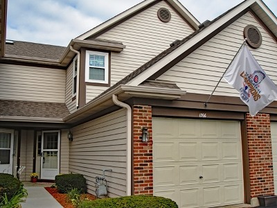 Schaumburg Condo/Townhouse For Sale: 1766 Nature Court