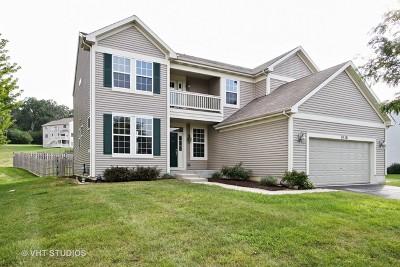 Johnsburg Single Family Home For Sale: 4116 Ella Lane