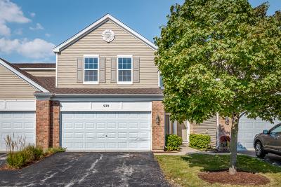 Oswego Condo/Townhouse For Sale: 529 Springbrook Trail North