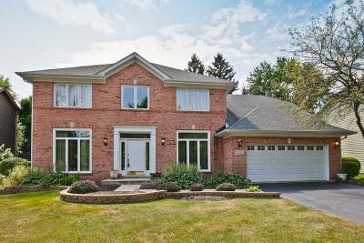 Bartlett Single Family Home For Sale: 1111 Struckman Boulevard