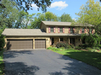 Sleepy Hollow Single Family Home For Sale: 714 Deer Lane