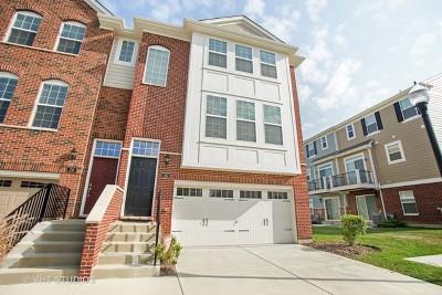 Schaumburg Condo/Townhouse Price Change: 26 Dana Catherine Street #26
