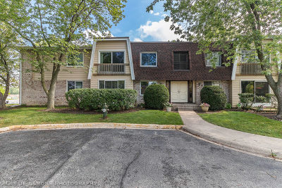 Woodridge Condo/Townhouse Contingent: 2920 Roberts Drive #1