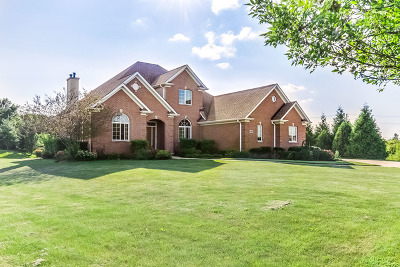 McHenry Single Family Home For Sale: 1801 Vivian Way Court