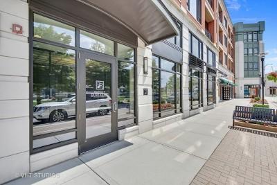 Burr Ridge Condo/Townhouse For Sale: 850 Village Center Drive #316