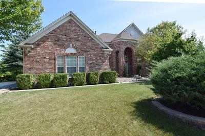 Algonquin Single Family Home For Sale: 14 Rock River Court