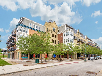 Lemont Condo/Townhouse For Sale: 315 Front Street #1305