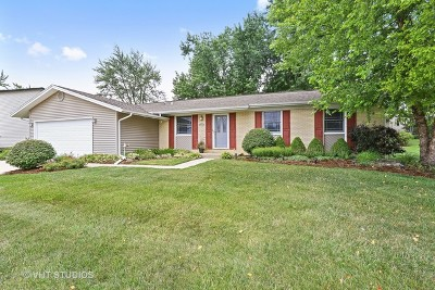 Hoffman Estates Single Family Home For Sale: 3780 Winston Drive