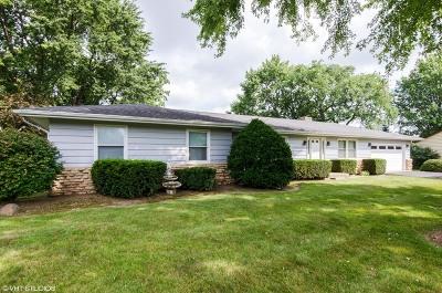 Sleepy Hollow Single Family Home For Sale: 144 Hilltop Lane