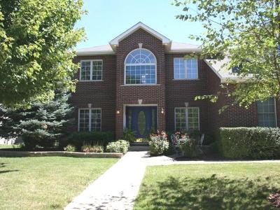 Plainfield Single Family Home For Sale: 12557 Larkspur Lane