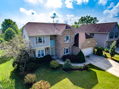 Bloomingdale Single Family Home For Sale: 117 Northwoods Lane