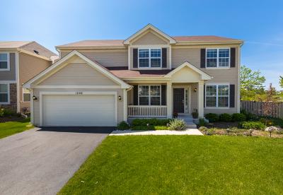 Pingree Grove Single Family Home For Sale: 1202 Evergreen Lane