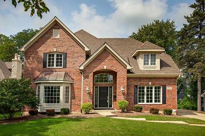 Glen Ellyn Single Family Home For Sale: 792 Lenox Road