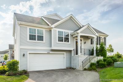 Pingree Grove Condo/Townhouse Contingent: 1251 Alta Vista Drive