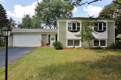 Cary Single Family Home Contingent: 16 Boxwood Lane