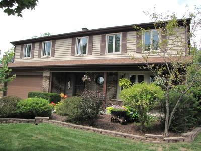 Darien Single Family Home For Sale: 2206 Hamilton Lane