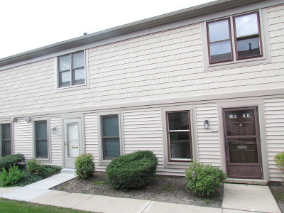 Hoffman Estates Condo/Townhouse For Sale: 1841 Sessions Walk Drive #1841