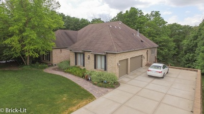Mokena Single Family Home For Sale: 20344 Old Castle Drive