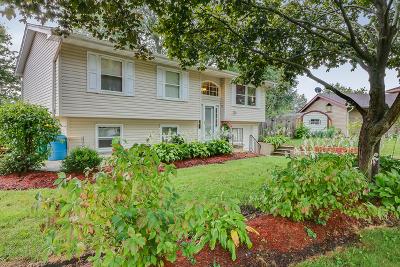 Oswego Single Family Home For Sale: 11 Shell Court