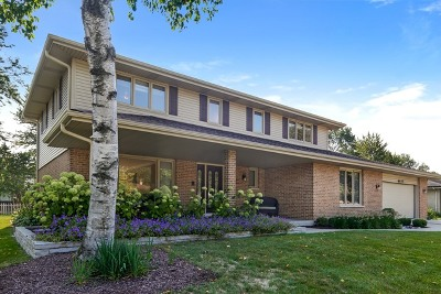 Willowbrook Single Family Home For Sale: 6645 Sheffield Lane