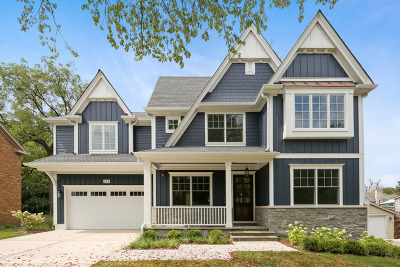 Glen Ellyn Single Family Home For Sale: 246 Van Damin Avenue