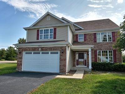 Joliet Single Family Home For Sale: 3816 Stockton Drive