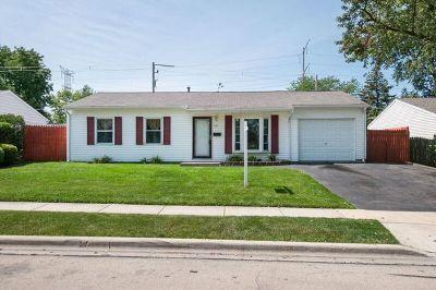 Romeoville Single Family Home For Sale: 226 Hickory Avenue