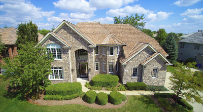 South Elgin Single Family Home For Sale: 701 Waters Edge Drive