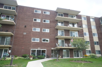 Downers Grove Condo/Townhouse For Sale: 5300 Walnut Avenue #17D