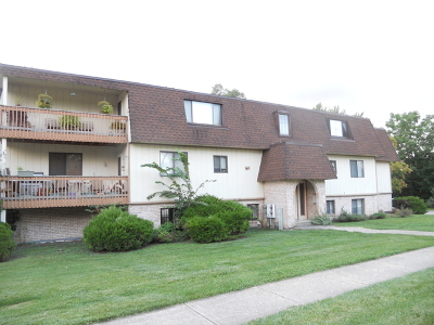Mokena Condo/Townhouse Contingent: 19444 Wolf Road #6