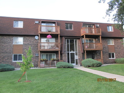 Mokena Condo/Townhouse Contingent: 19380 Wolf Road #9
