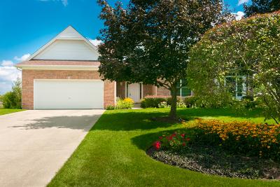 Hoffman Estates Single Family Home For Sale: 1285 Hunters Ridge West