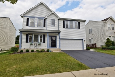 Pingree Grove Single Family Home For Sale: 342 Brookhaven Trail